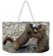 4m09150-02-marmot Fight Weekender Tote Bag