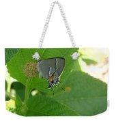 Martial Scrub Hairstreak Butterfly Weekender Tote Bag