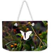 Maui Butterfly Weekender Tote Bag