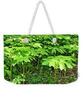 Mayapple Plants Weekender Tote Bag
