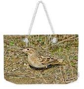 Mccowns Longspur Weekender Tote Bag