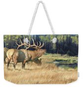 Meadow Music Weekender Tote Bag
