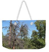 Meadow Over Oak Creek Canyon  Weekender Tote Bag