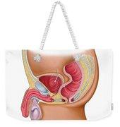 Medical Illustration Of A Rectourethral Weekender Tote Bag by Stocktrek Images