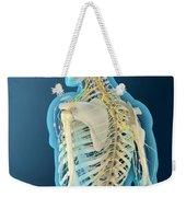 Medical Illustration Of Human Brain Weekender Tote Bag