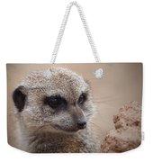 Meerkat 7 Weekender Tote Bag