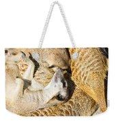 Meerkat Group Resting Weekender Tote Bag