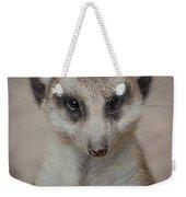 Meerkat Stare-down Weekender Tote Bag