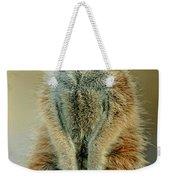 Meerkat Suricata Suricatta Weekender Tote Bag