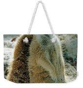 Meerkats Suricata Suricatta Weekender Tote Bag