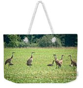 Meeting Of The Cranes Weekender Tote Bag