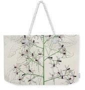 Melia Azedarach From 'phytographie Medicale' By Joseph Roques Weekender Tote Bag