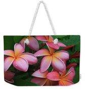 Melia Hae Hawaii Pink Tropical Plumeria Keanae Weekender Tote Bag
