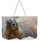 Merry Marmot Weekender Tote Bag