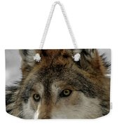 Mexican Grey Wolf Upclose Weekender Tote Bag