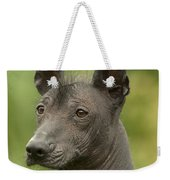 Mexican Hairless Dog Weekender Tote Bag