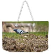 Michigan Rock Pigeon Weekender Tote Bag