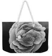 Microcarrier Bead, Sem Weekender Tote Bag