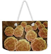 Microscopic View Of Rubella Virus Weekender Tote Bag by Stocktrek Images
