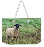 Middle Child - Blackfaced Sheep Weekender Tote Bag
