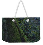 Midnight Tree By Jrr Weekender Tote Bag