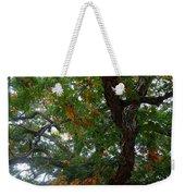 Mighty Fall Oak #2 Weekender Tote Bag