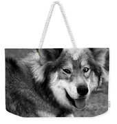 Miley The Husky With Blue And Brown Eyes - Black And White Weekender Tote Bag by Doc Braham