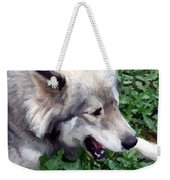 Miley The Husky With Blue And Brown Eyes - Impressionist Artistic Work Weekender Tote Bag
