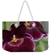 Miltoniopsis Rouge 'california Plum'  Macro  2692 Weekender Tote Bag