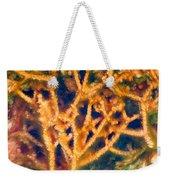 Mineral Branches Hot Springs Weekender Tote Bag