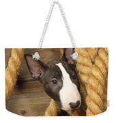 Miniature Bull Terrier Puppy Weekender Tote Bag