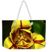 Mirrored Tulip Time Weekender Tote Bag