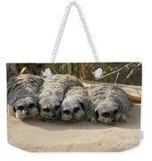 Mischievous Meerkats Weekender Tote Bag