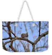 Mister Squirrel Weekender Tote Bag
