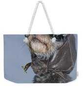 Mixed Breed Dog Dressed In Leather Cap Weekender Tote Bag
