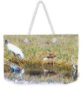 Mixed Group Of Shore Birds Weekender Tote Bag