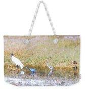 Mixed Shore Birds Weekender Tote Bag