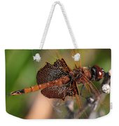 Mocha And Cream Dragonfly Profile Weekender Tote Bag