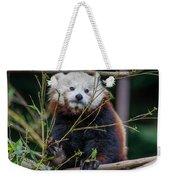 Mohu The Teenage Red Panda Weekender Tote Bag