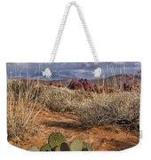 Mojave Desert Cactus Weekender Tote Bag