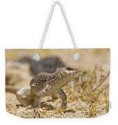 Mojave Desert Iguana Weekender Tote Bag