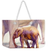 Mom And Baby Boy Elephants Weekender Tote Bag