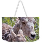 Momma And Baby Ram Weekender Tote Bag