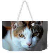 Momma Cat Weekender Tote Bag