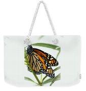 Monarch Beauty Weekender Tote Bag