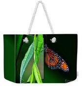 Monarch Butterfly 04 Weekender Tote Bag