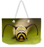 Monarch Butterfly Caterpillar I Weekender Tote Bag
