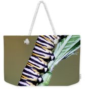 Monarch Butterfly Caterpillar Weekender Tote Bag