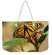 Monarch Butterfly On Plant With Eggs Weekender Tote Bag