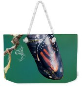 Monarch Butterfly Ready To Emerge Weekender Tote Bag